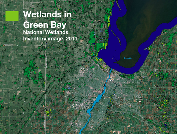 Most of the historic wetlands in the Green Bay area are gone. Remaining wetlands are shown here in green and blue over satellite imagery.