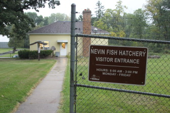 At the Nevin Hatchery in Fitchburg near Madison, thousands of trout were released into the wild before officials learned some of the fish had tested positive for cutthroat trout virus.