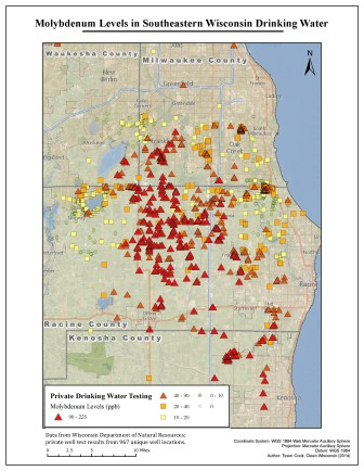 Clean Wisconsin Map of Molybdenum Levels
