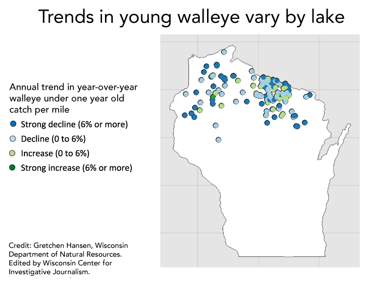 Chart: Walleye trends vary by lake