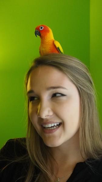 Haley Henschel and Bruce the parrot