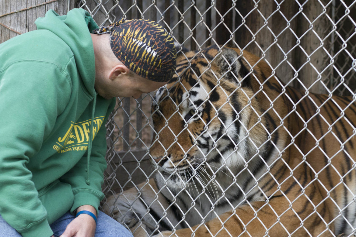 Wisconsin one of five states where 'dangerous' exotic animals can be