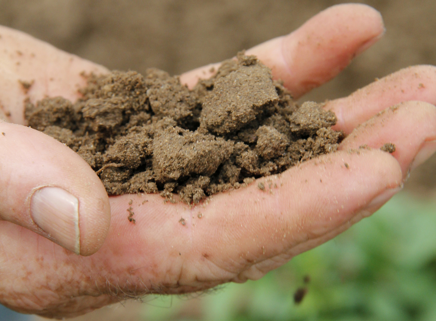 how to make potassium nitrate from soil