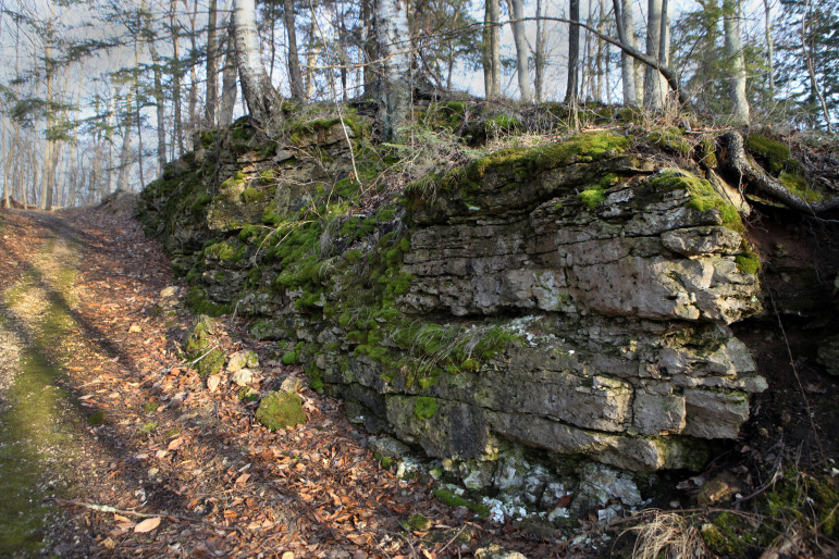 The fractured karst geography of Door County is seen in this exposed piece of bedrock along a driveway in Ephraim. The porous bedrock found in the county makes it easy for sewage that leaks from failing septic tanks to make its way into private drinking water wells.